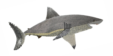 """Aircraftcarrier: GREAT WHITE SHARK. One cannot undo in this lifetime all the bad publicity sharks get thanks to Hollywood. But the shock I had experienced building the Aircraftcarrier was revealing and not planned. I did him from the memory of a picture I saw of him breaching for prey and at a certain point I cut his dorsal fin off to move it back further for better balance. But looking at what I did disturbed me deeply. Until I reattached the dorsal fin, I let visions of live finless sharks drowning to the bottom of the sea visit my imagination and became upset and angry. It's estimated that a hundred million sharks a year are harvested this way for SHARK FIN SOUP. SHARKFINNING for a ritualized centuries-old status symbol is devastating ecologically and ethically beneath contempt. (75"""" W x 40"""" H – 30 lbs.)"""