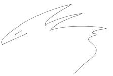 signature - fish